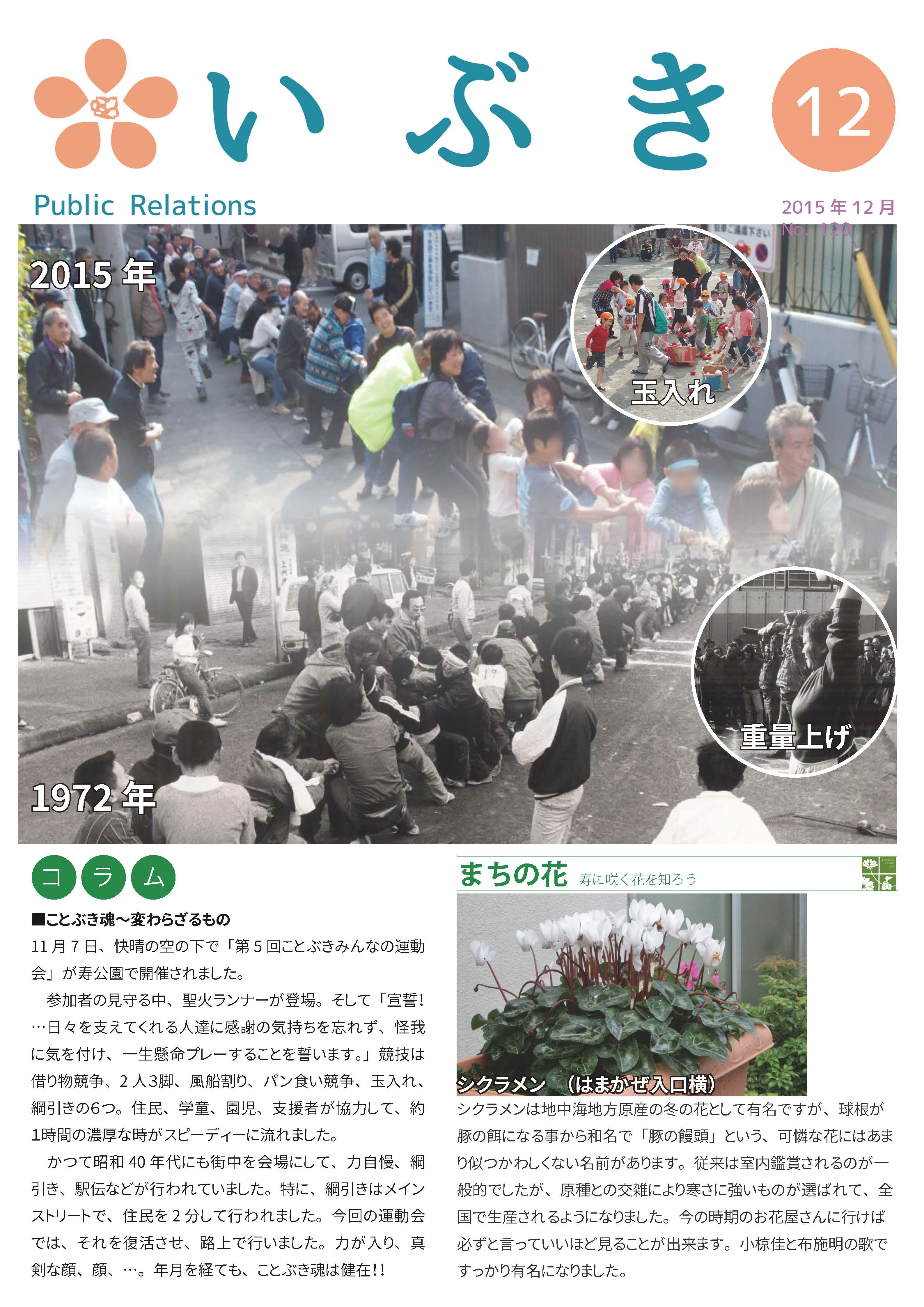 広報紙いぶき2015年12月号(No.120)