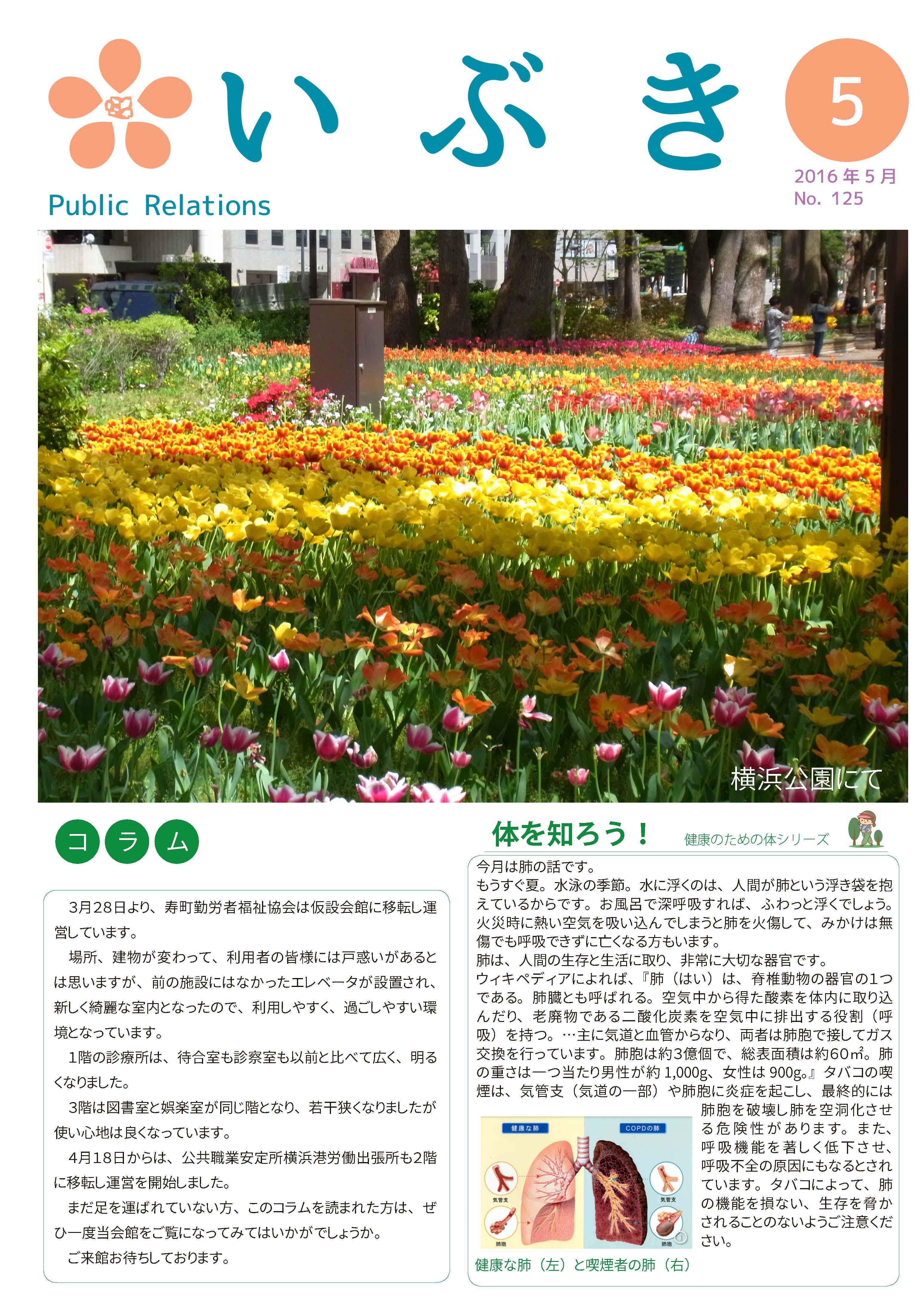 広報誌いぶき2016.5月号(No.125)