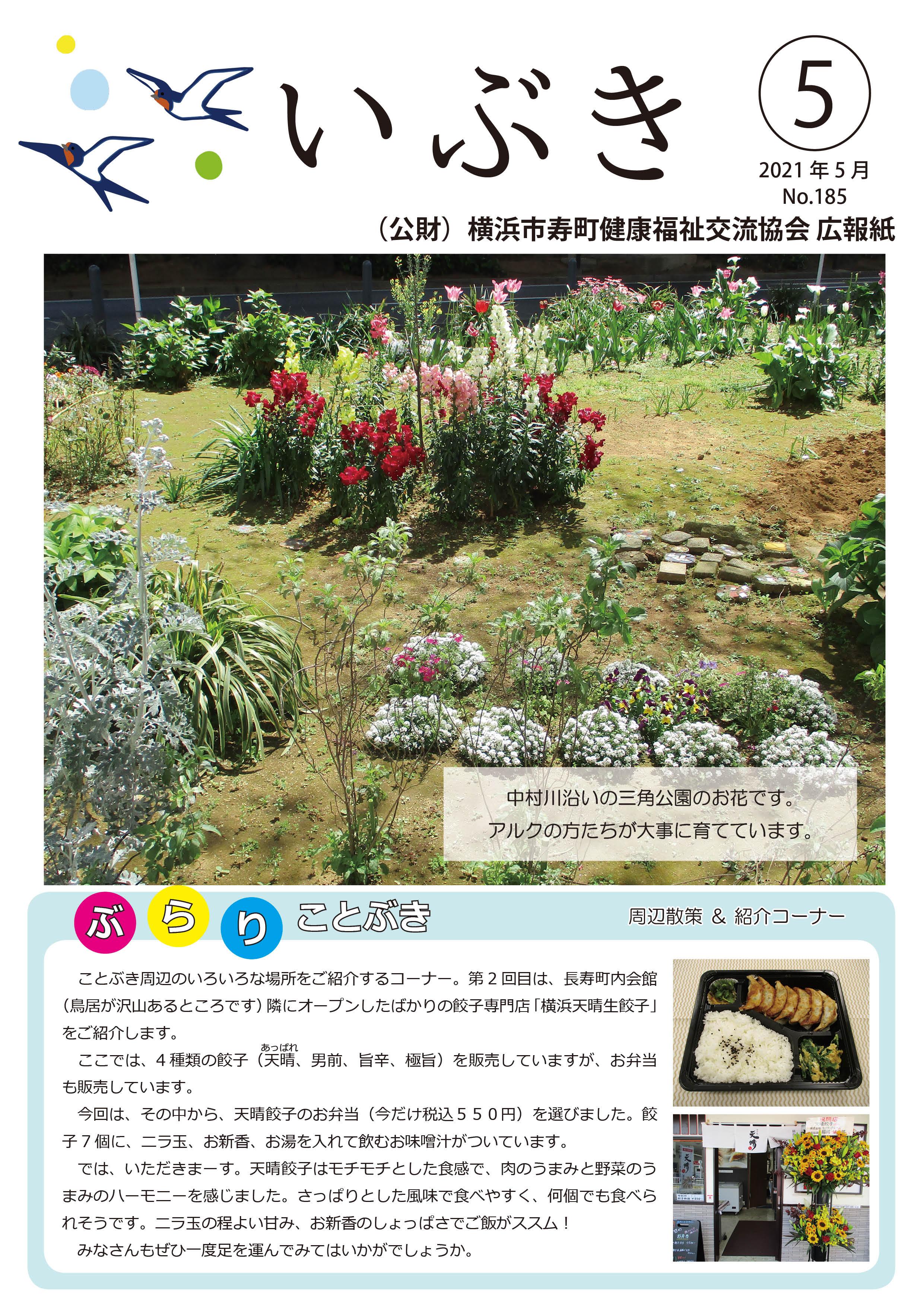 広報紙いぶき2021年5月号(No.185)